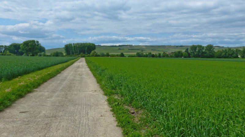 Selztal near Hahnheim