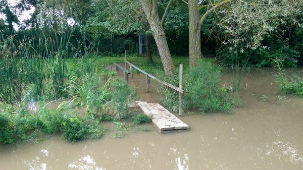 Selz (Hochwasser)