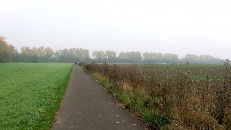 Joggen im Selztal