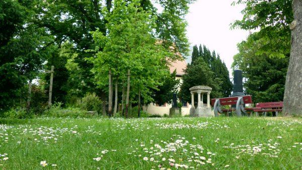 Unser Park im Mai