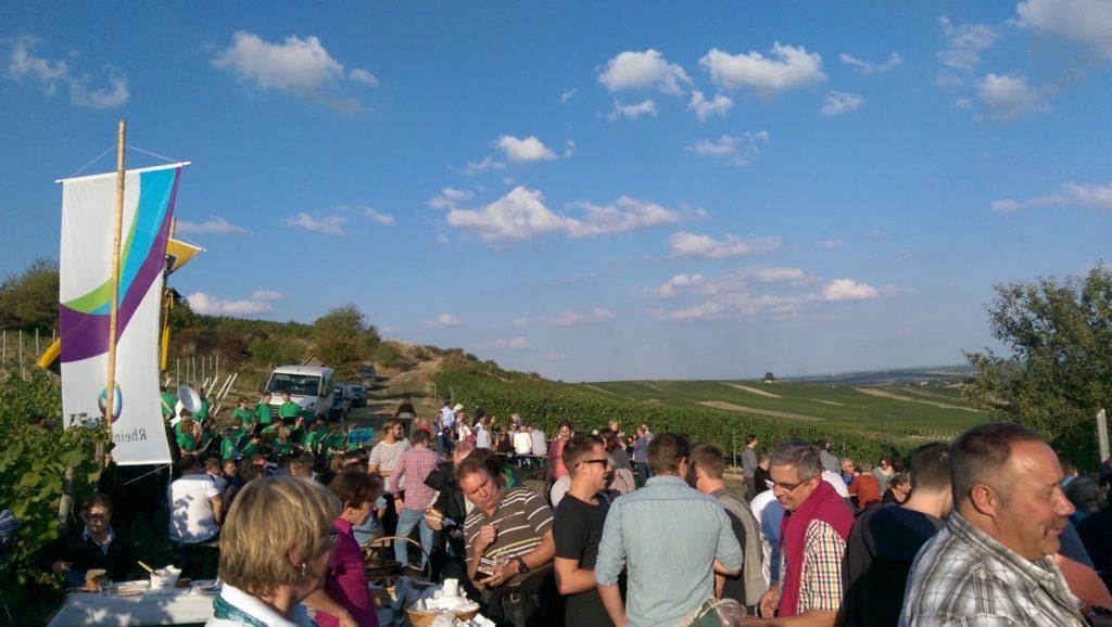 Kerbeweinprobe des Bauern- und Winzervereins im Selzer Berg