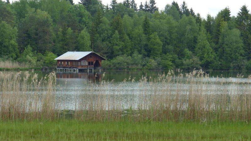 Wanderung Hopfensee (29.05.2016)