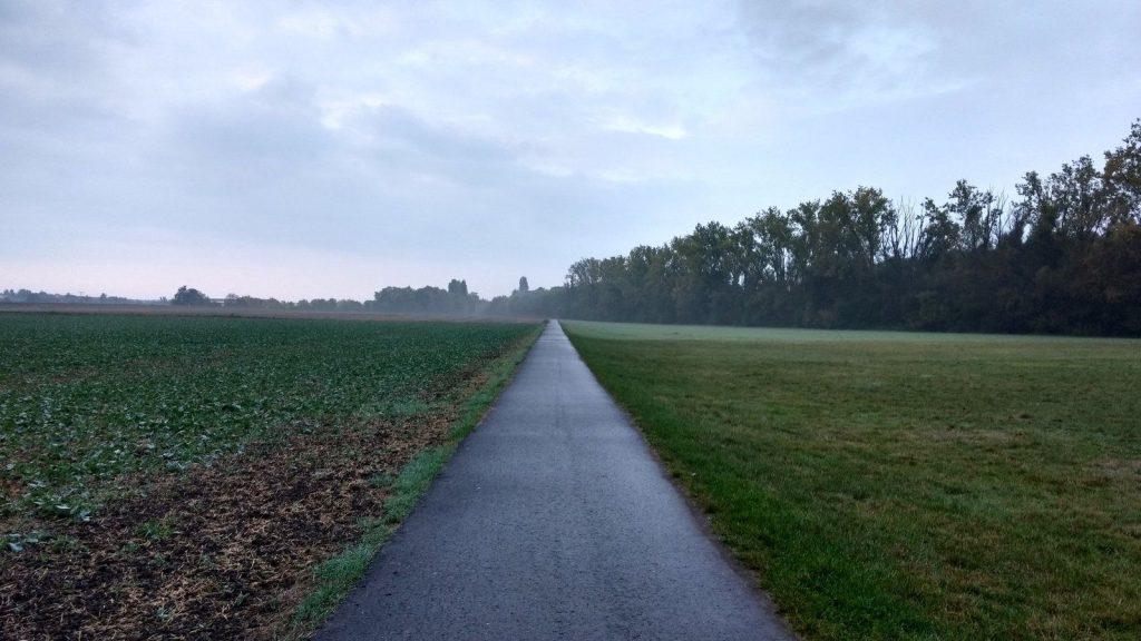 Joggen im Selztal zwischen Selzen und Untermühle