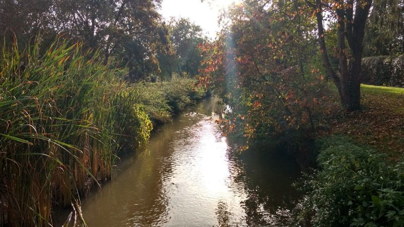 Herbst im Selztal