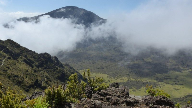 Maui, Haleakala: Halemau'u Trail
