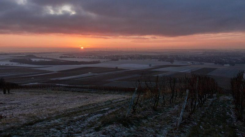 Sonnenaufgang überm Selztal #12SunriseRheinhessen