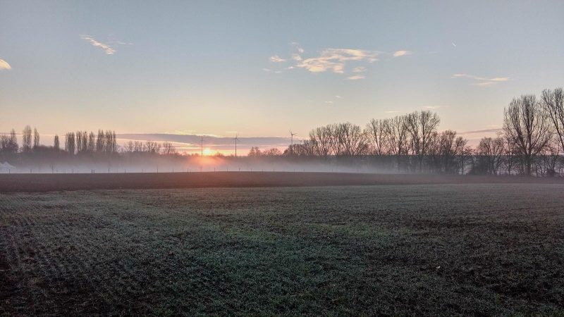 SunriseRun - Sonnenaufgang im Selztal