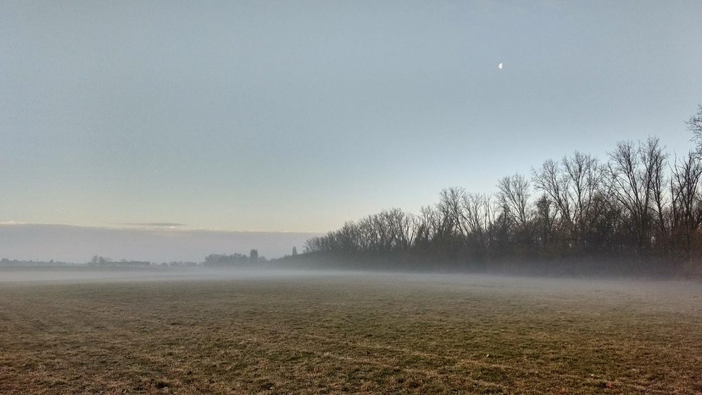 SunriseRun - Monduntergang im Selztal