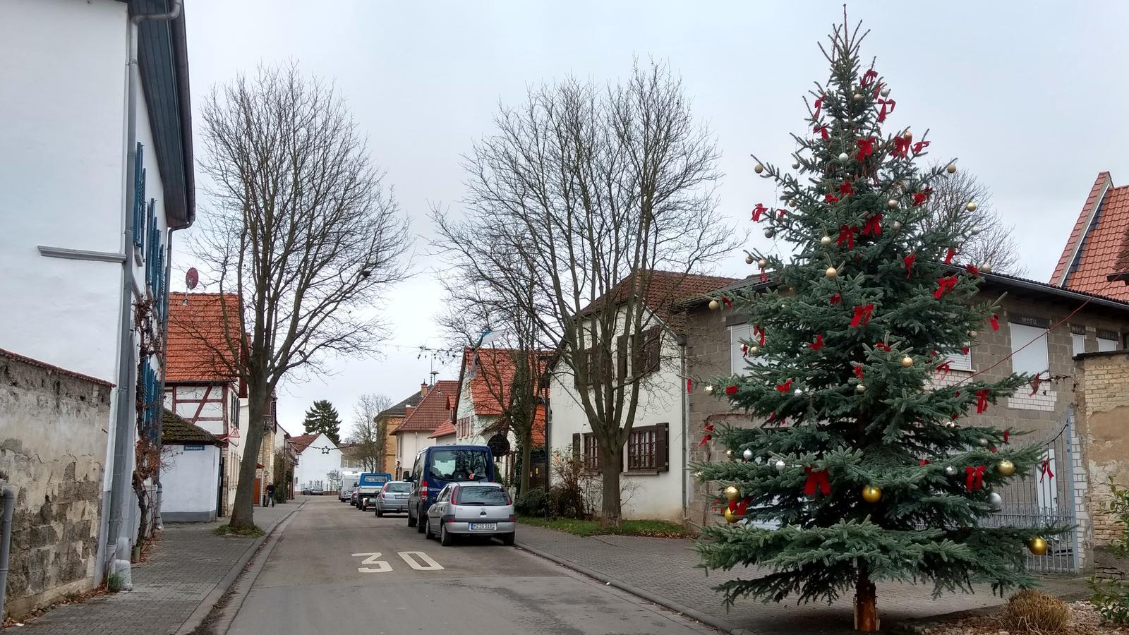 Tannenbaum Singen.Singen Und Musizieren Unterm Weihnachtsbaum In Selzen Der Entspannende