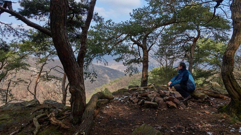 Frank auf dem Ohligsberg im Binger Wald