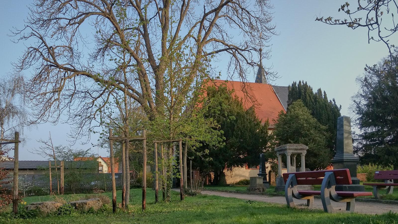 Kleiner Rundgang auf dem evangelischen Friedhof in Selzen
