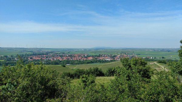Blick vom Petersberg auf Gau-Odernheim und Donnersberg