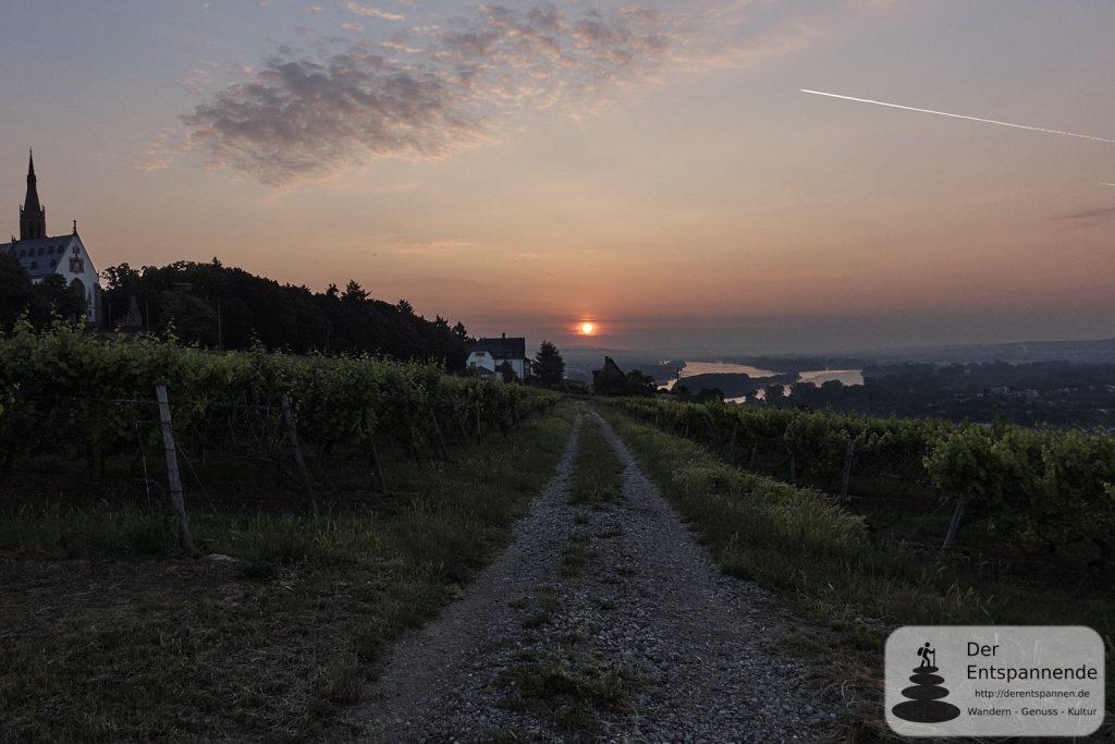 Sonnenaufgang über Rochuskapelle, Oblatenkloster St. Rupert und Rhein