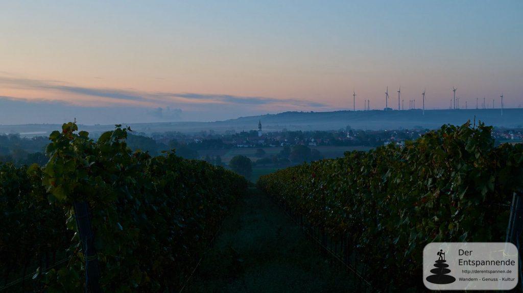 Gau-Odernheim im Selztal