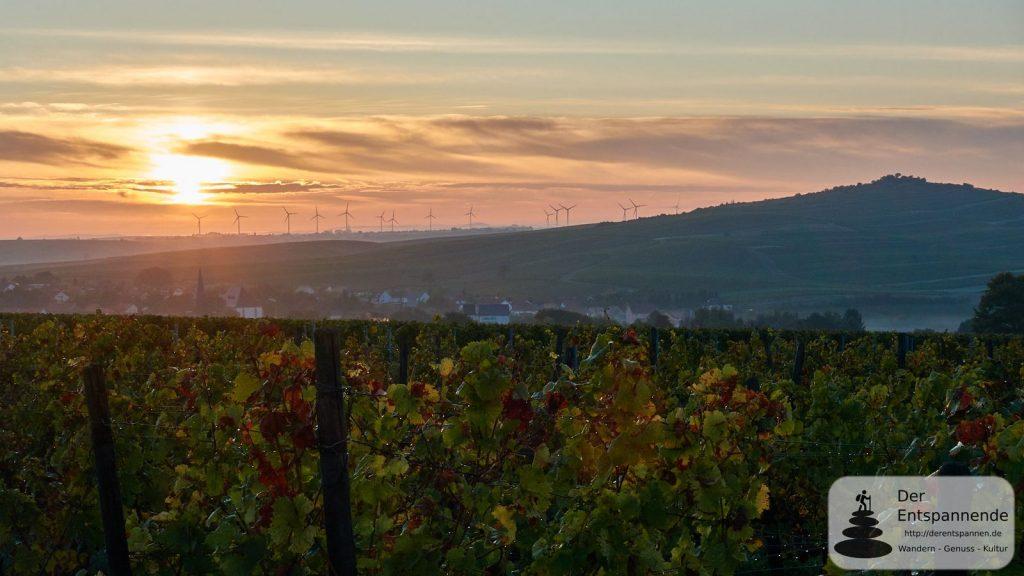 Sonnenaufgang über Bechtolsheim und dem Selztal