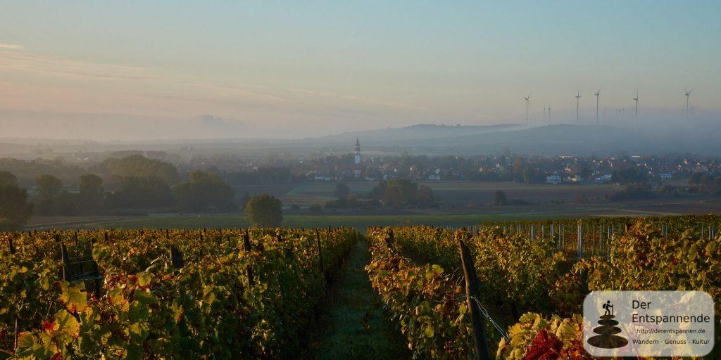 Gau-Odernheim im Selztal und im Nebel