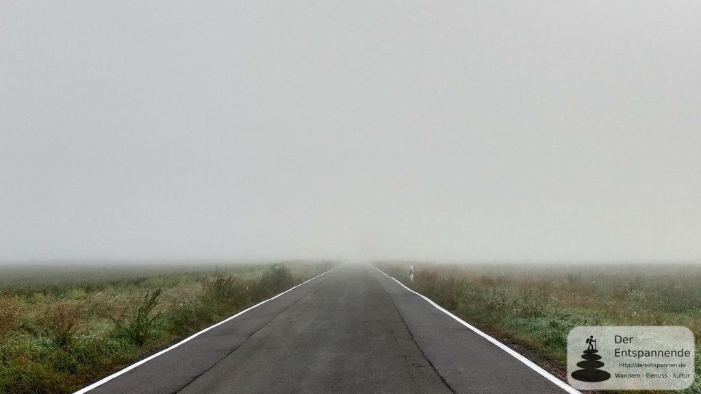 Nebel im Selztal - kurz und irgendwo vor Undenheim