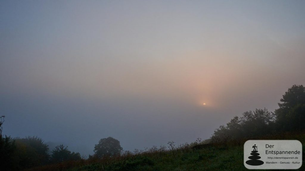 Selztal im Nebel
