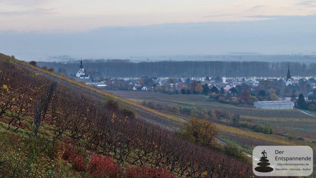 Kilianskirche bei Nierstein am Rhein (links)