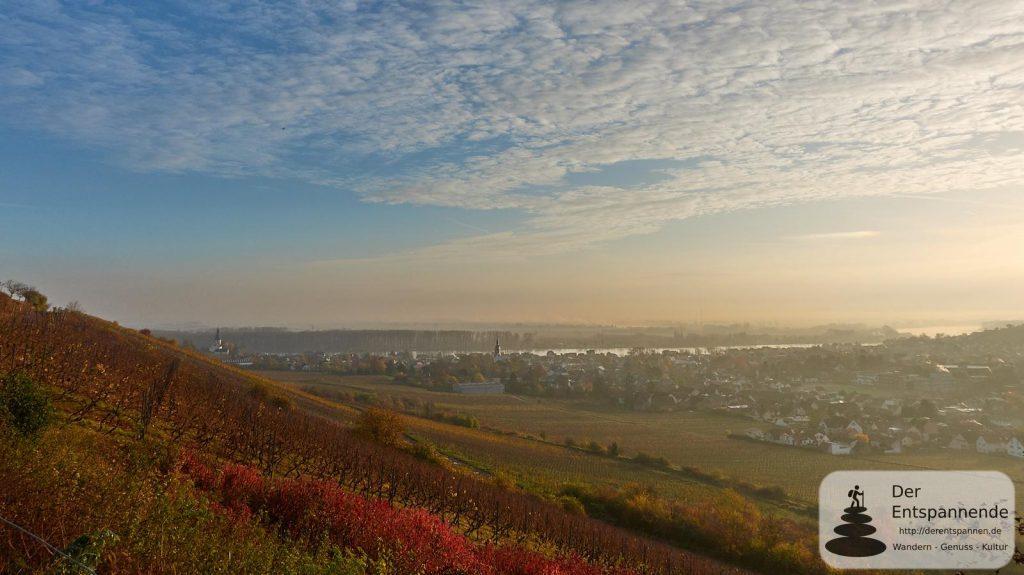 Sonnenaufgang bei Nierstein am Rhein - #12SunriseRheinhessen