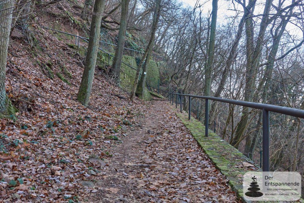 Drei-Burgenwanderung Ebernburger Wald