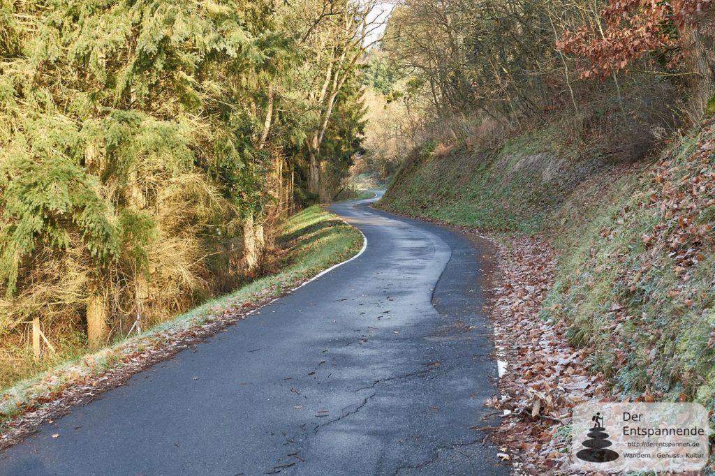 Auf dem Weg zur Altenbaumburg