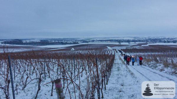Winterzauber mit dem Wilmshof: Mit Fackeln zurück ins Selztal