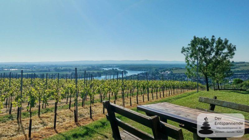 Niersteiner Wartturm - SunriseRun zwischen Selztal und Rheintal bei Nierstein