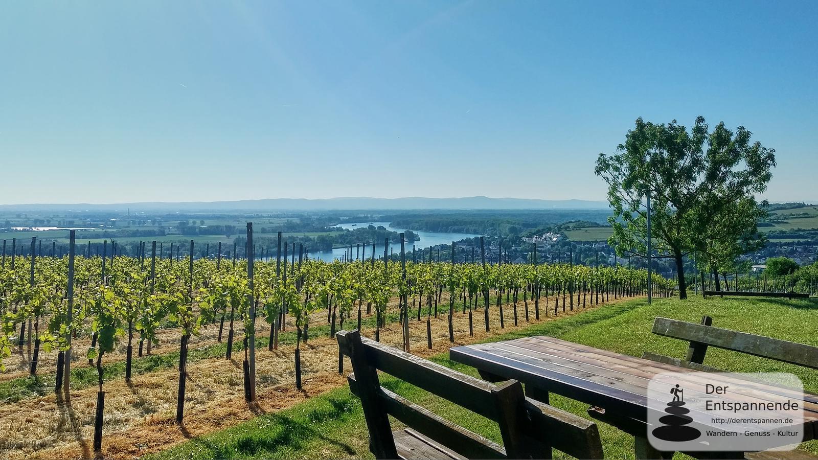 Empfehlungen zum Verweilen und Erleben für den Rheinterrassenweg