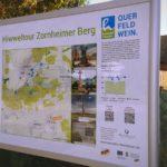 Hiwweltour Zornheimer Berg: Zuweg von Selzen