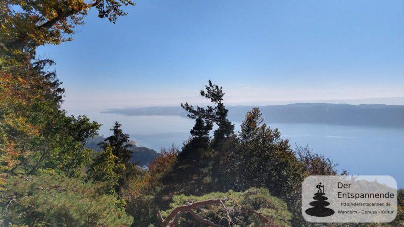 Aussichtspunkt am Haldenhof auf den Bodensee