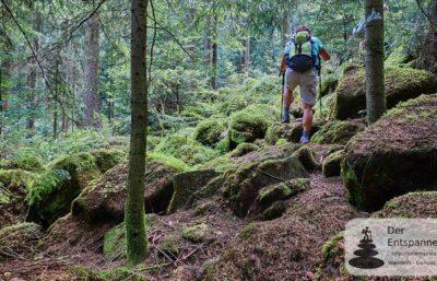Querfeldein auf dem Albtal.Abenteuer.Track (Bloggerwochenende im Albtal)
