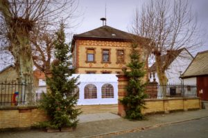 Alter Schulhof Selzen mit Weihnachtsbäumen