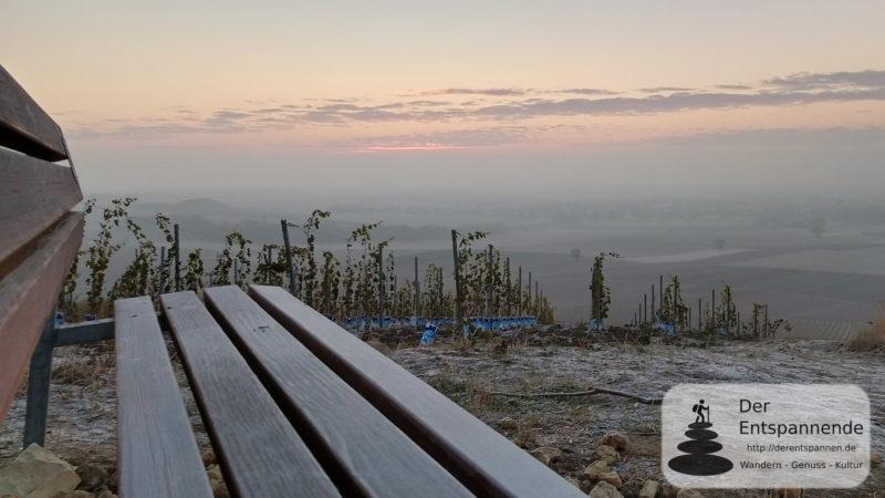 Die Selzstellung über dem Selztal (SunriseRun zum Selzer Berg)