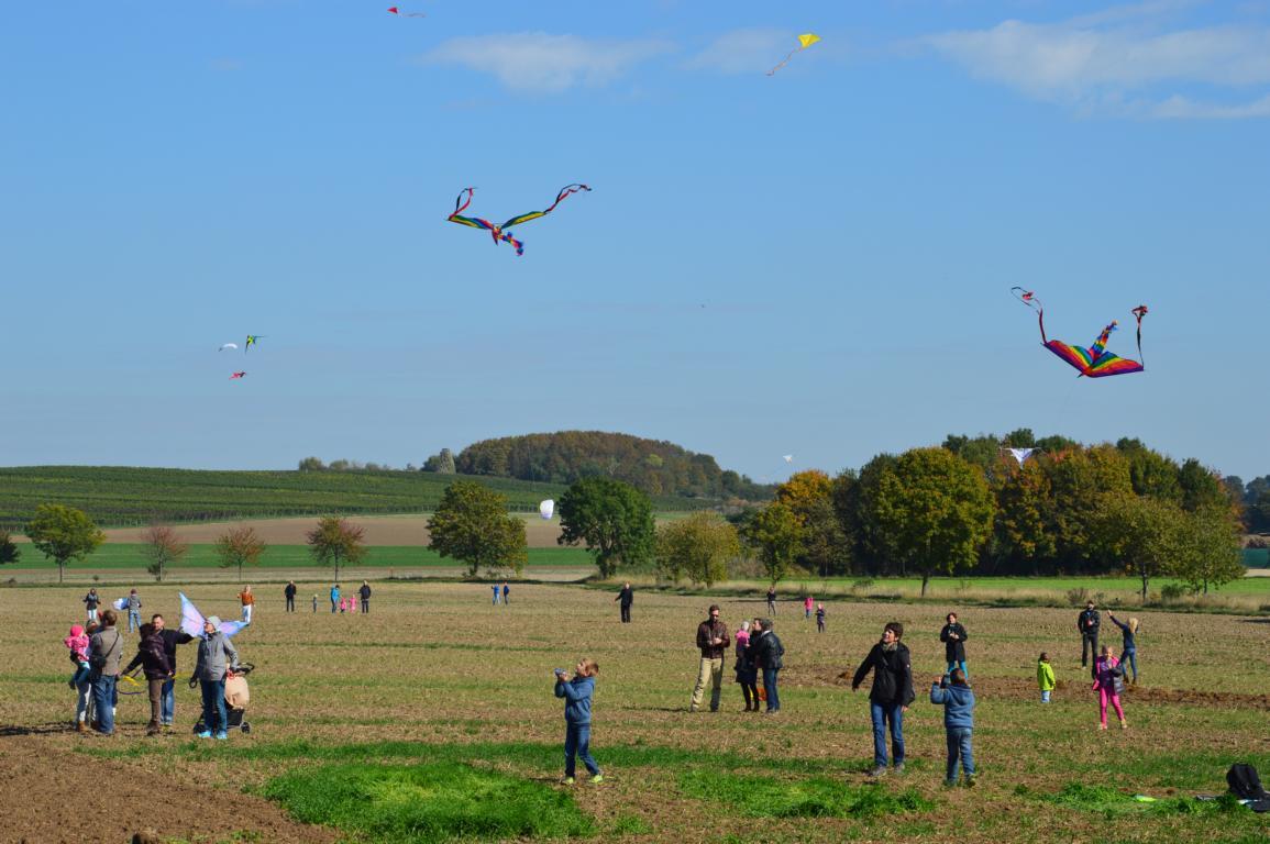 Drachenflugtag Selzen (Pressefoto)