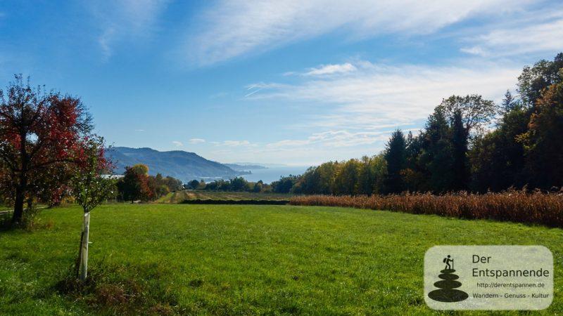 Rundwanderung Ludwigshafen - Stockach: Blick zurück auf den Bodensee, oberhalb von Ludwigshafen