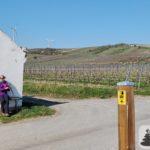 Saisoneröffnung Hiwweltour Zornheimer Berg (31.03.2019)