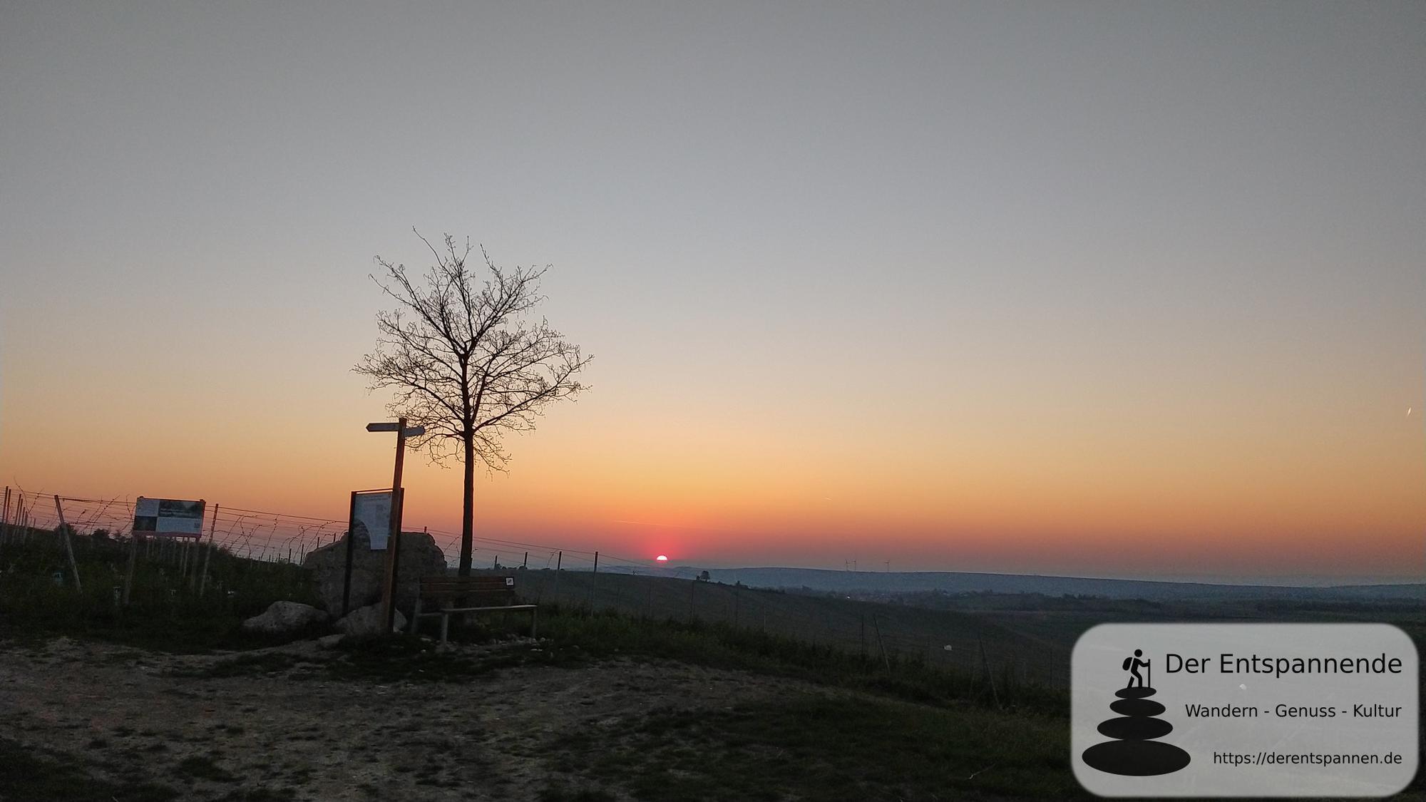 Guten Morgen Rheinhessen – Carpe momentum im Selztal beim SunriseRun an Ostersonntag