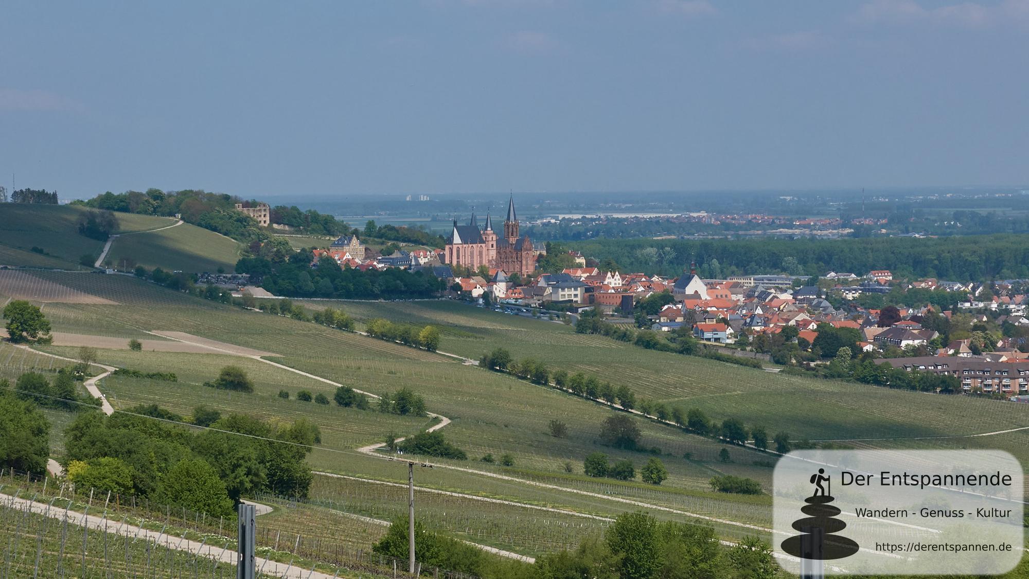 Oppenheimer Rheinterrassen-Wanderung statt Niersteiner Drei-Türme-Wanderung