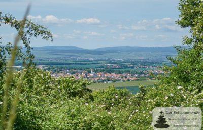Wissberg: Blick auf Sprendlingen
