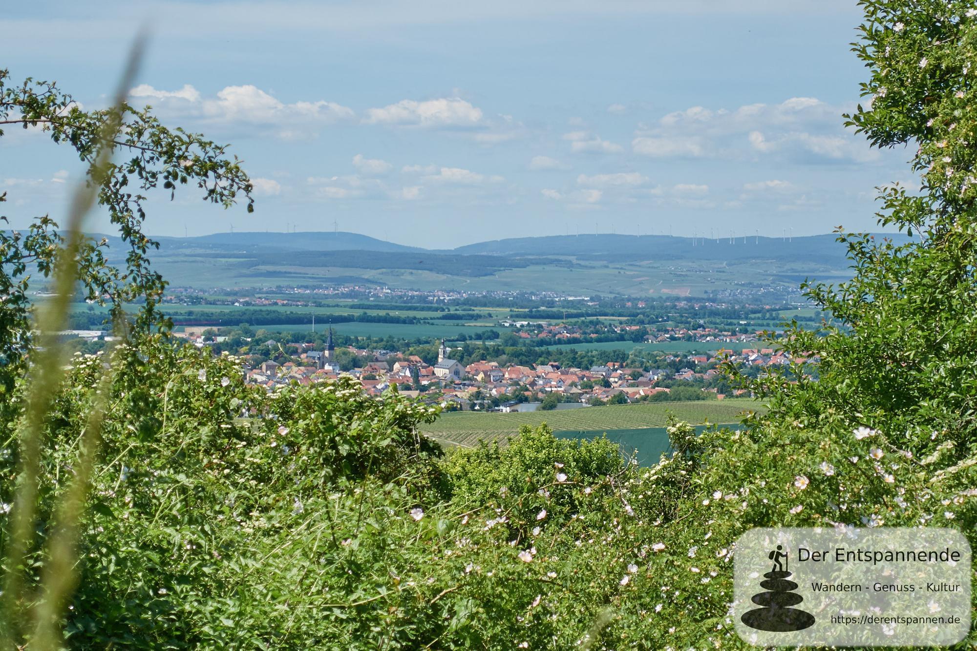 Wandern am Wissberg in der Rheinhessischen Toskana
