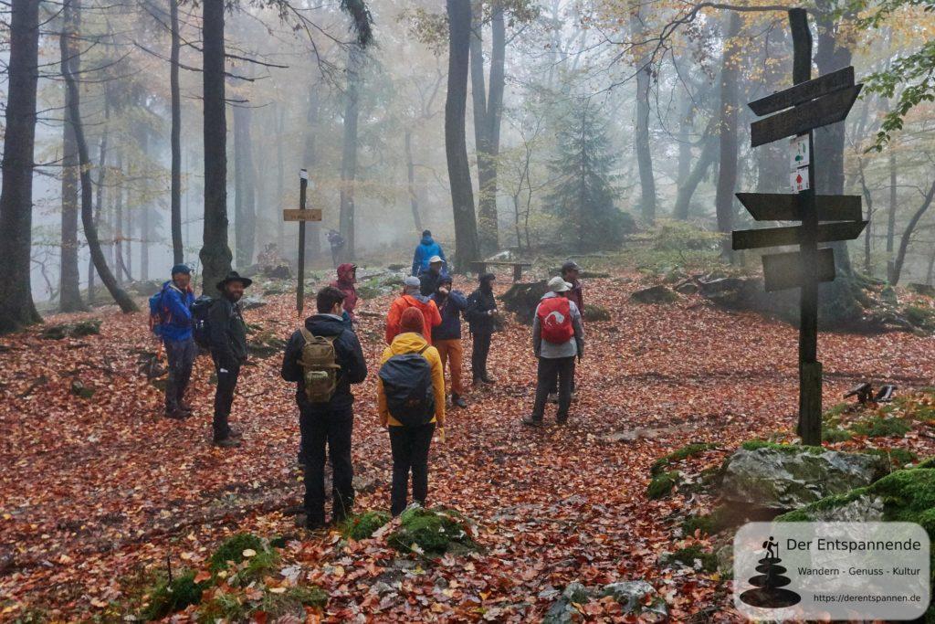 Mit Ranger Oliver Groß auf Saar-Hunsrück-Steig, Etappe 12