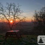 #12Selzbogen: Sonnenaufgang, Jubiläumswald im Selzer Jubiläumswald im Selzer Gottesgarten (Januar am Selzbogen)