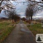 """Amiche: Skulptur """"Fern ab"""" am Radweg von Selzen-Mommenheim (ehemalige Bahnstrecke Alzey-Bodenheim)"""