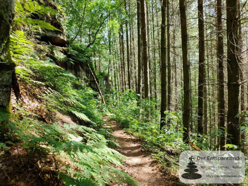 Fußpfad auf dem Felsenwanderweg Rodalben