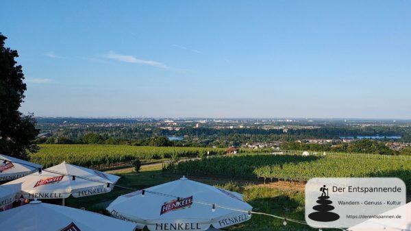 Hofgut Laubenheimer Höhe: Blick über den Hofgarten ins Rheintal
