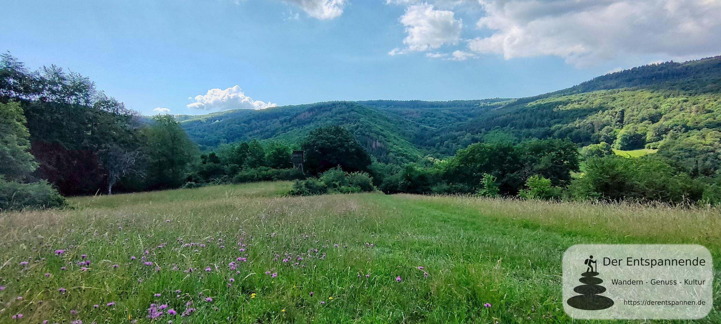 Wisper Trails: Via Monte Preso wandern