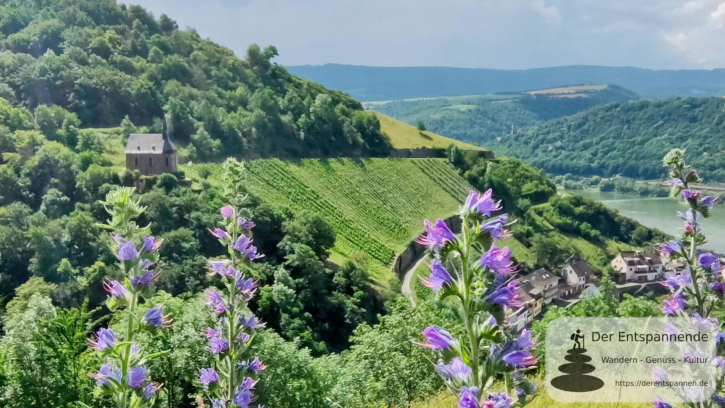 Freistaat Flaschenhals – Weinwanderung am Mittelrhein