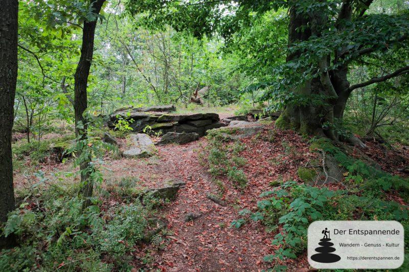 Auf der Via Sacra (Oberlausitz): Waldpfad am Schmoritz