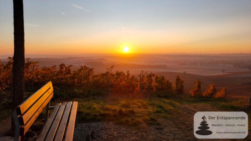 SunriseRun in den Weinbergen über Selzen und dem Selztal (an der Selzstellung)